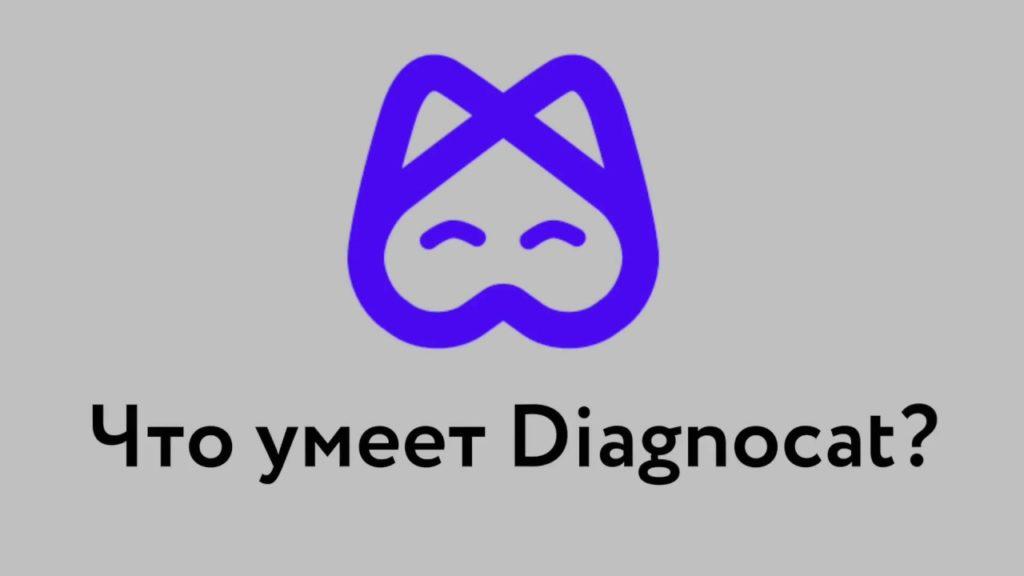 Что умеет Diagnocat?