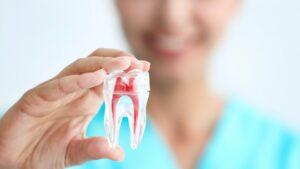 Лечение зубов. Какая диагностика может потребоваться?